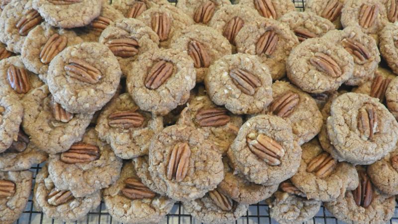 Chocolate Coconut Crisps - Feature